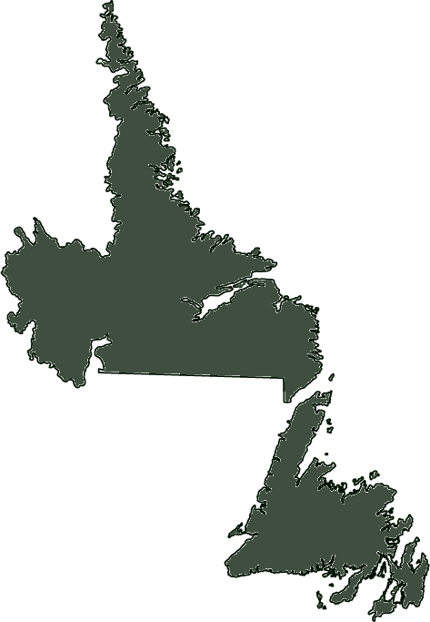 Outline of Newfoundland and Labrador